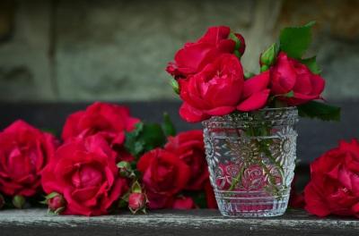 roses pixabay pic